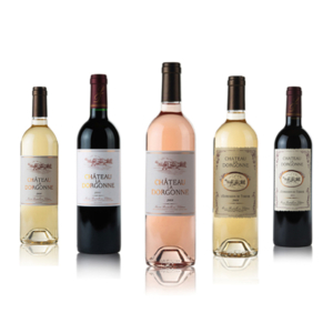Bouteille de vins Château la Dorgonne